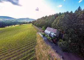 1-web-alpine-vineyards-vineyard-for-sale-monroe-oregon-pinot-the-kelly-group-real-estate