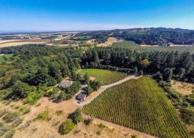 1-web-walnut-hill-rd-amity-oregon-vineyards-for-sale-yamhill-county-pinot-noir-the-kell-y-group-real-estate