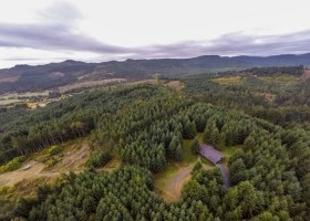 16-web-meadowlake-rd-yamhill-vineyard-potential-marketable-timber-large-acreage-for-sale-yamhill-county-oregon-the-kelly-group-real-estate